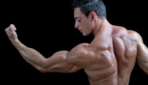 5 động tác đơn giản tập cơ bắp