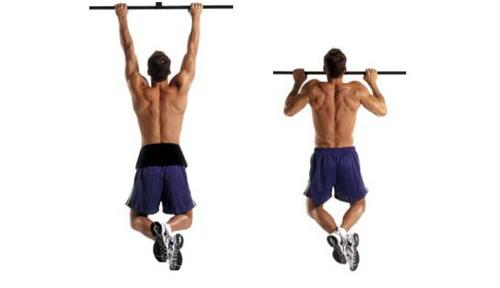 Bài tập cơ vai cơ bản cho người mới tập gym