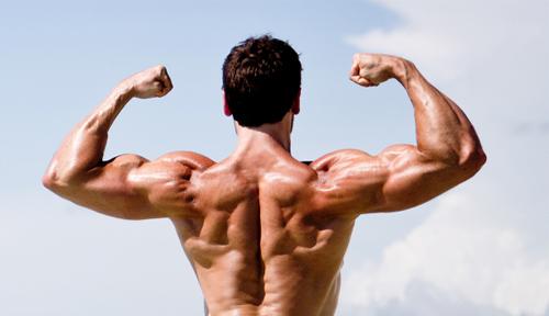 Chương trình tập tay tối ưu cho cơ bắp tay to