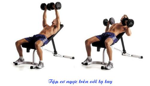 Hướng dẫn tập cơ ngực đúng cách và hiệu quả nhất