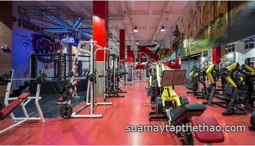 Sửa chữa thiết bị phòng Gym tại TP HCM
