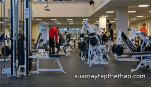 Sửa chữa thiết bị phòng Gym tại Hà Nội